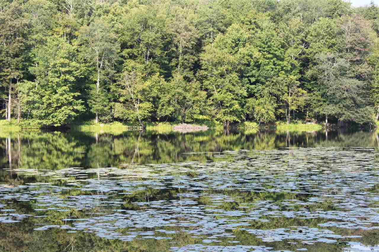 Real Estate for Sale, ListingId: 34906518, Kenoza Lake,NY12750