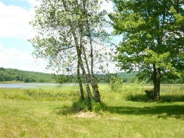 Real Estate for Sale, ListingId: 36055433, Woodridge,NY12789
