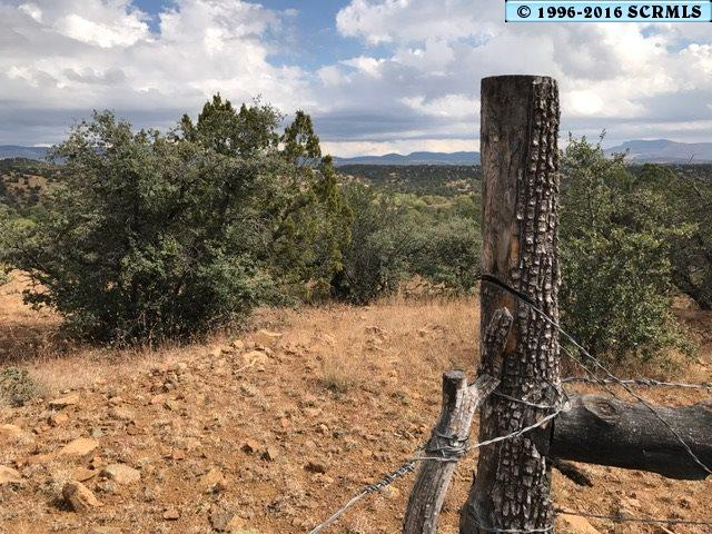 primary photo for off Cowtrail, Silver City, NM 88061, US