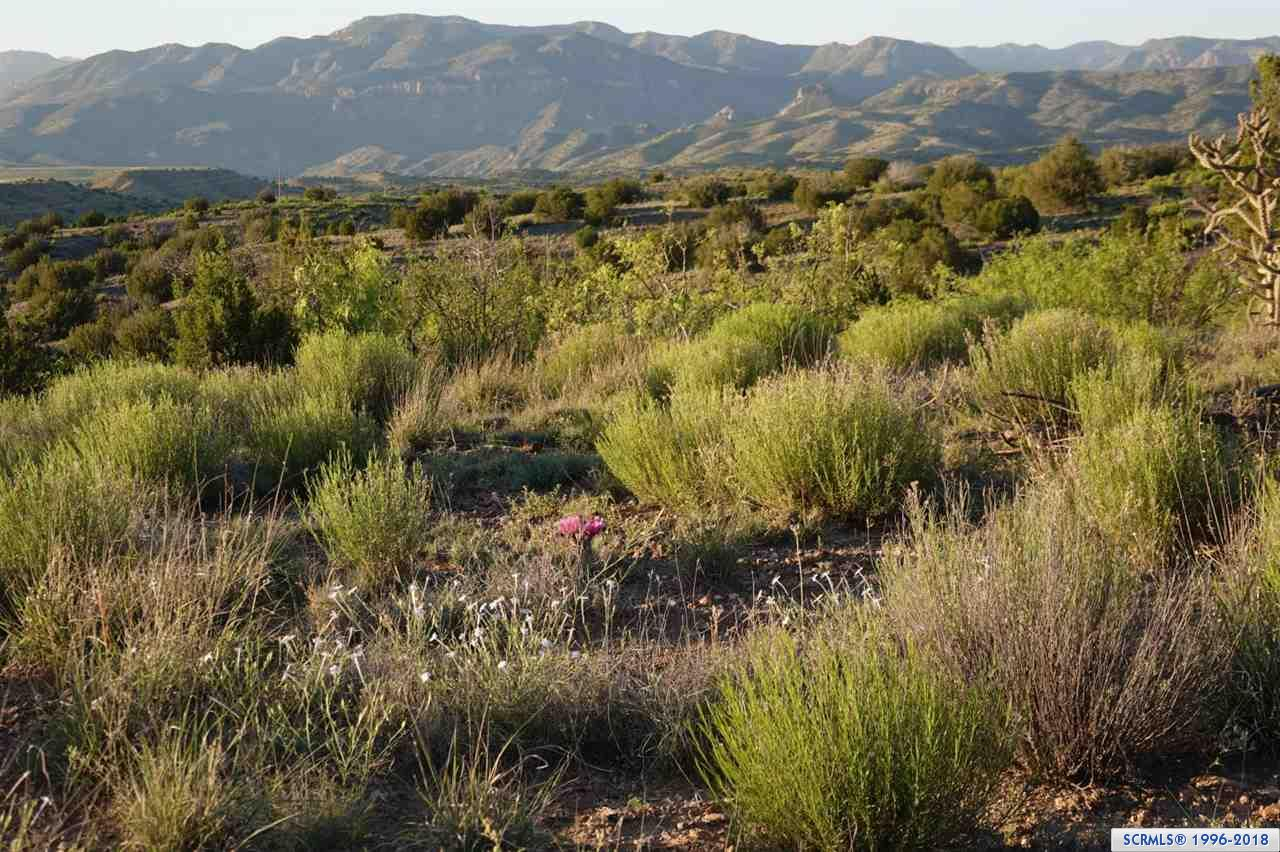 primary photo for xx Hooker Loop, Gila, NM 88038, US