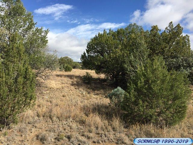 primary photo for 5020 Little Walnut Rd., Silver City, NM 88061, US