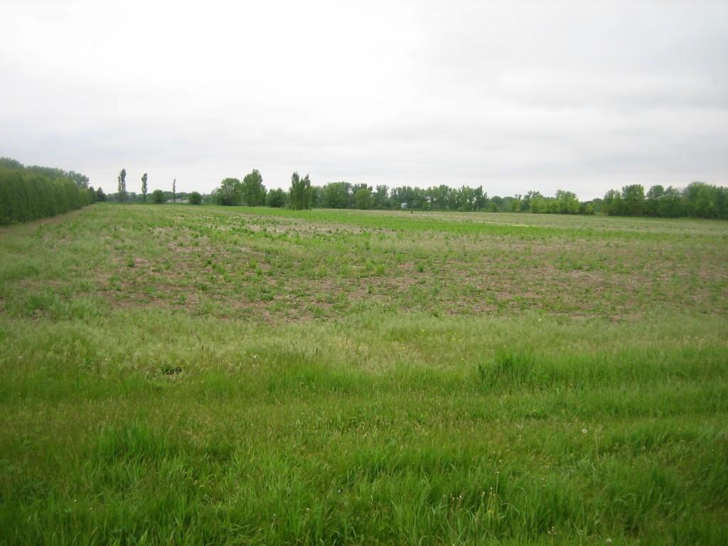 Tbd Itasca Road Albert Lea, MN 56007