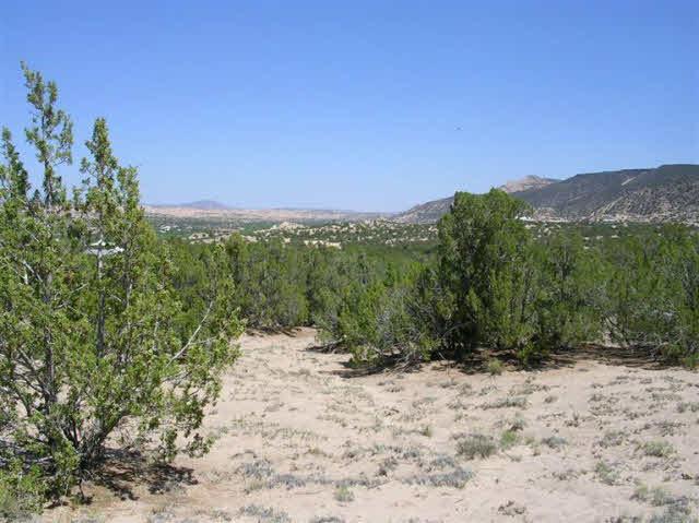 Cottontail 1E1 Ojo Caliente, NM 87549