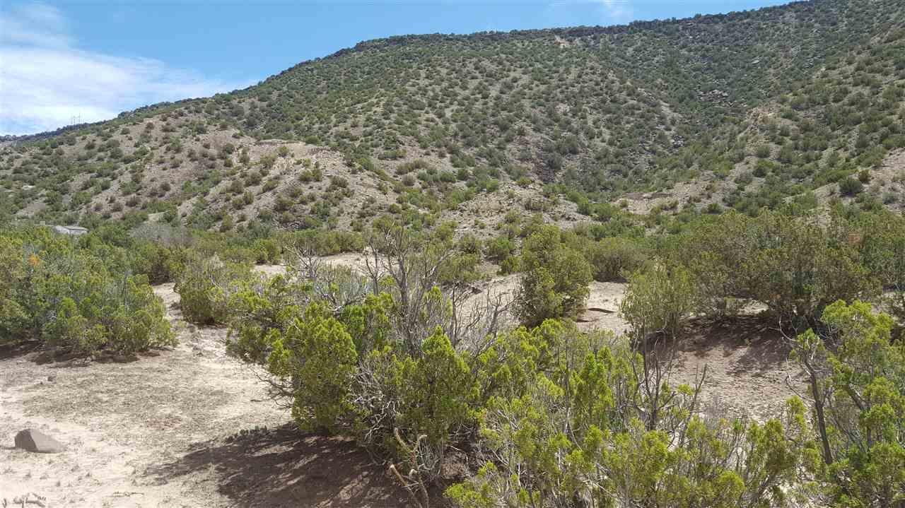 Lot 3, Bloc 3, Cedar Ridge Subdivision Ojo Caliente, NM 98749