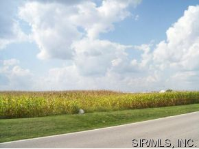 Image of Acreage for Sale near Litchfield, Illinois, in Montgomery county: 4.00 acres