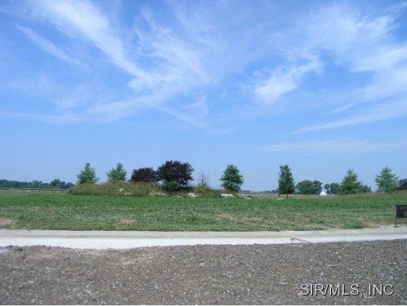 Real Estate for Sale, ListingId: 14132409, Columbia,IL62236