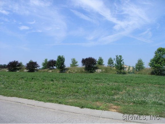 Real Estate for Sale, ListingId: 14132410, Columbia,IL62236