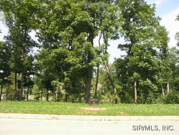 Real Estate for Sale, ListingId: 14132412, Columbia,IL62236
