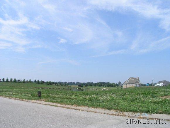 Real Estate for Sale, ListingId: 14138614, Columbia,IL62236