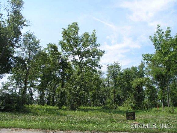 Real Estate for Sale, ListingId: 14138611, Columbia,IL62236