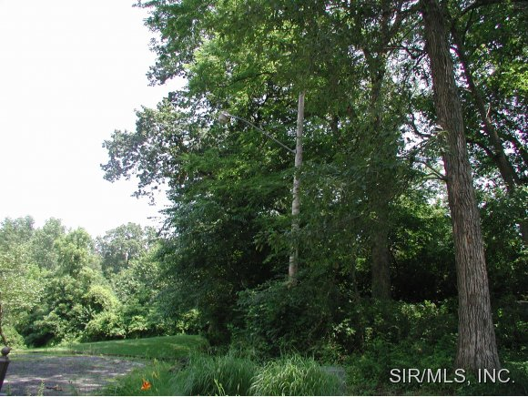 Real Estate for Sale, ListingId: 17190575, Carlyle,IL62231