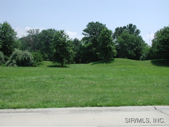 Real Estate for Sale, ListingId: 17190577, Carlyle,IL62231