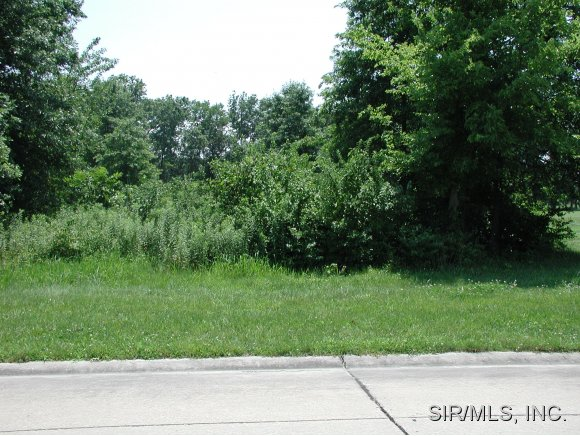 Real Estate for Sale, ListingId: 17190578, Carlyle,IL62231