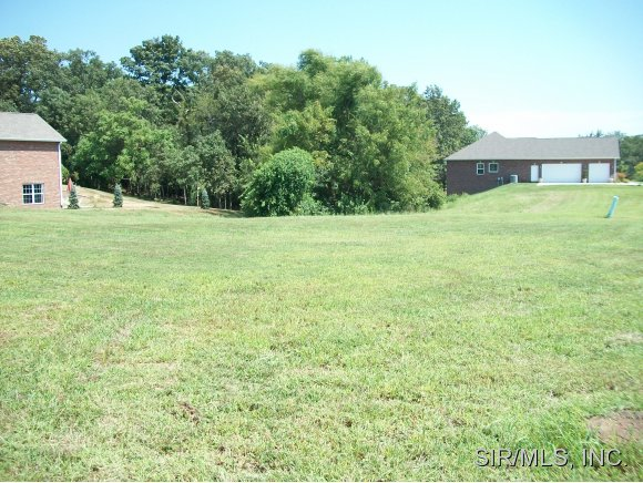 Real Estate for Sale, ListingId: 20495110, Millstadt,IL62260