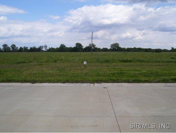 Real Estate for Sale, ListingId: 20084087, O Fallon,IL62269