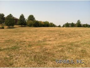 Real Estate for Sale, ListingId: 19899384, Smithton,IL62285