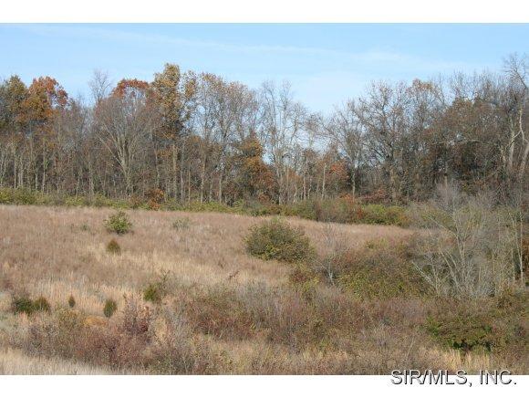 Real Estate for Sale, ListingId: 23092044, Collinsville,IL62234