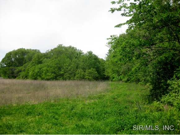 Image of Acreage for Sale near Brighton, Illinois, in Jersey county: 40.00 acres