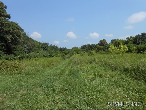 59.1 acres by Hardin, Illinois for sale