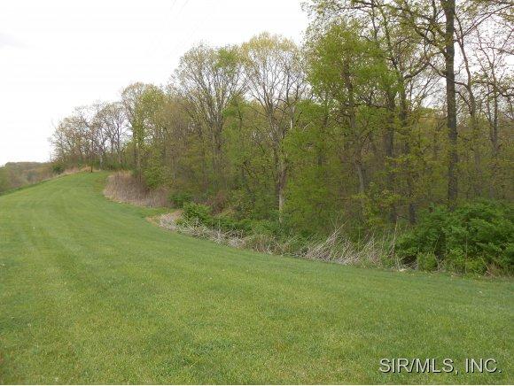 70 acres by Brighton, Illinois for sale