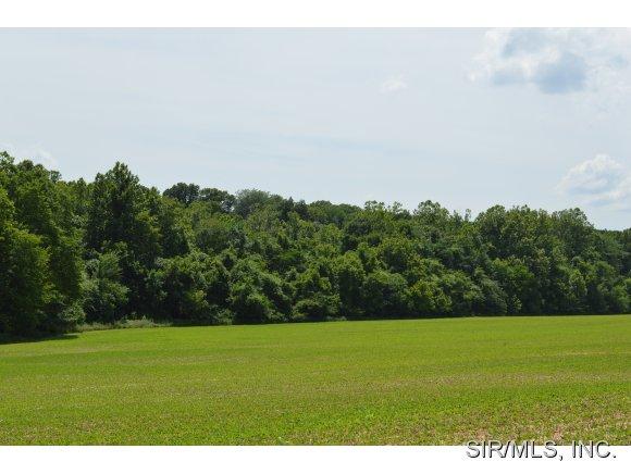 Real Estate for Sale, ListingId: 28692494, Godfrey,IL62035