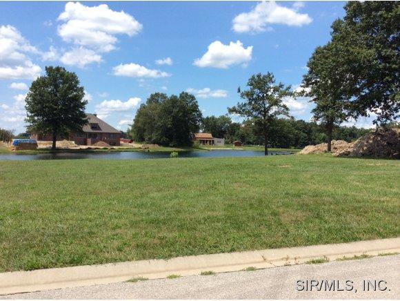 Real Estate for Sale, ListingId: 29108295, Staunton,IL62088