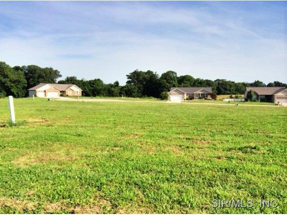 435 Bluff Meadows Dr, Valmeyer, IL 62295