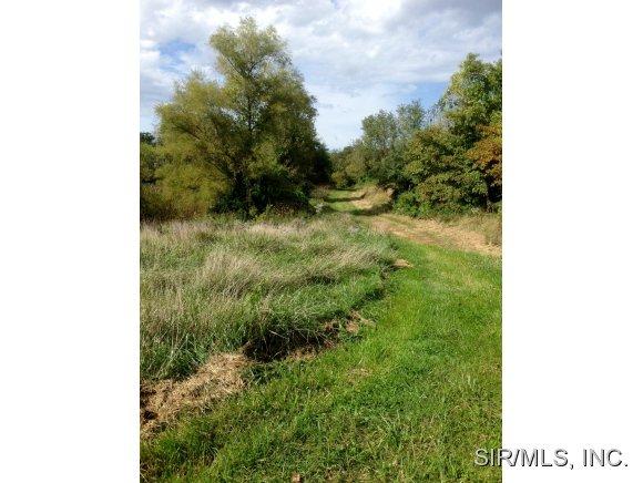 Real Estate for Sale, ListingId: 30188388, Brighton,IL62012