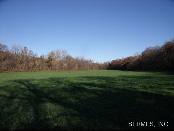 Real Estate for Sale, ListingId: 30502040, Mulberry Grove,IL62262