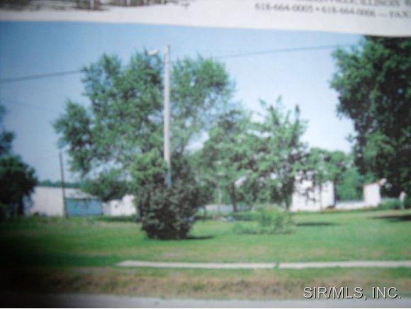 Real Estate for Sale, ListingId: 30757026, Mulberry Grove,IL62262