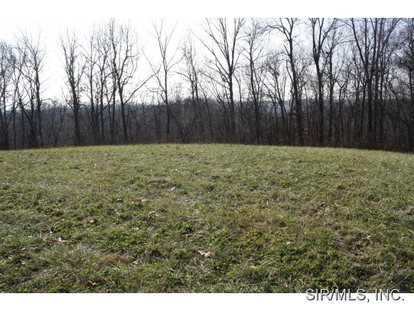 Real Estate for Sale, ListingId: 30965857, Grafton,IL62037