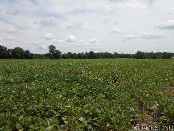 30 acres Godfrey, IL