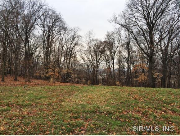 109 Big Tree Ln, Valmeyer, IL 62295
