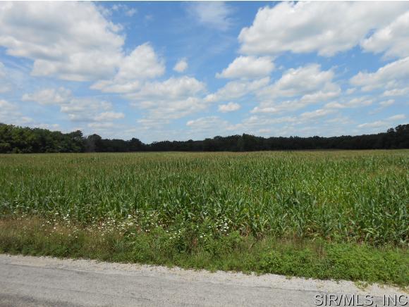 Real Estate for Sale, ListingId: 34493749, Plainview,IL62685