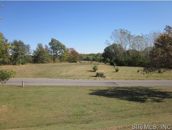 Real Estate for Sale, ListingId: 35865855, Smithton,IL62285