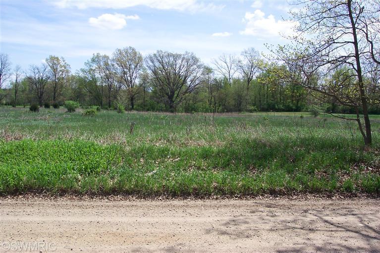 Real Estate for Sale, ListingId: 34929849, Burr Oak,MI49030