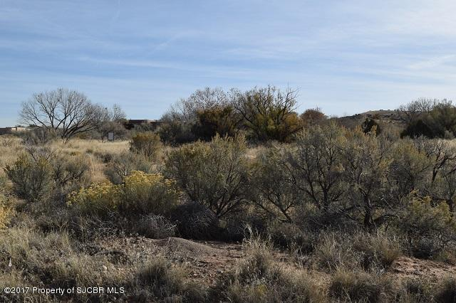 Lot 79 Road 3635 Aztec, NM 87410