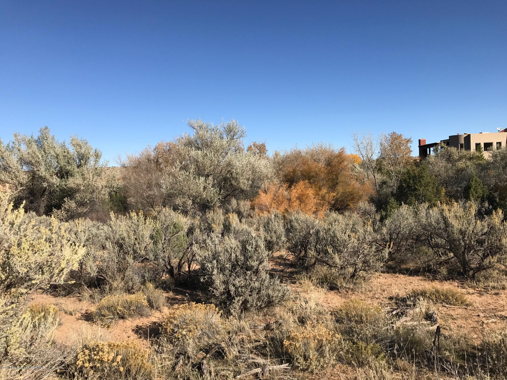 Lot 60 Road 3632 Aztec, NM 87410