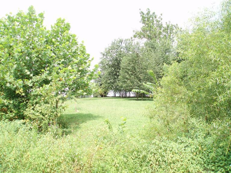 0.66 acres Science Hill, KY