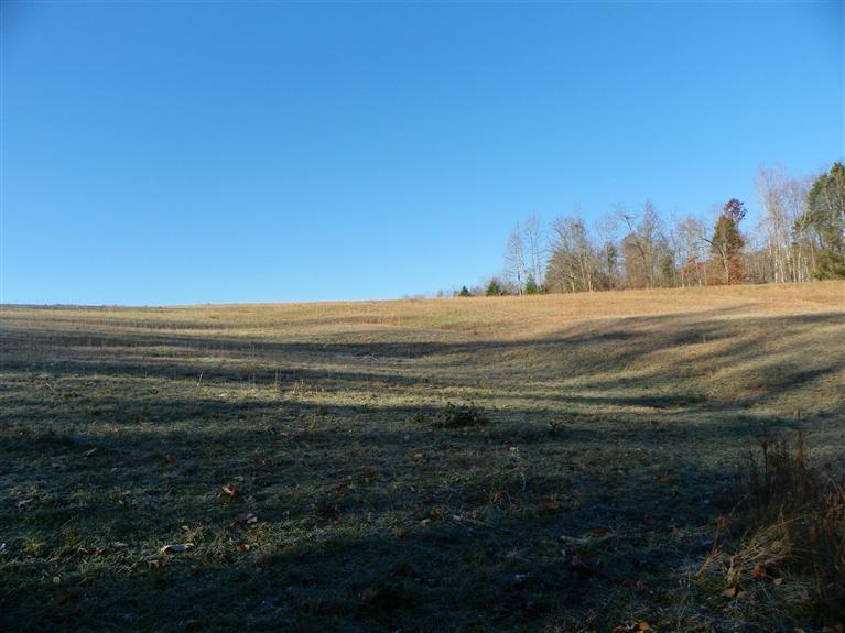 67 acres in Science Hill, Kentucky