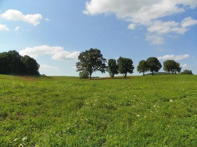 Real Estate for Sale, ListingId: 29647907, Somerset,KY42503