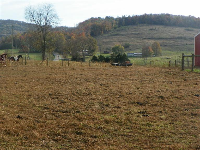 Image of Acreage for Sale near Albany, Kentucky, in Clinton county: 284.00 acres