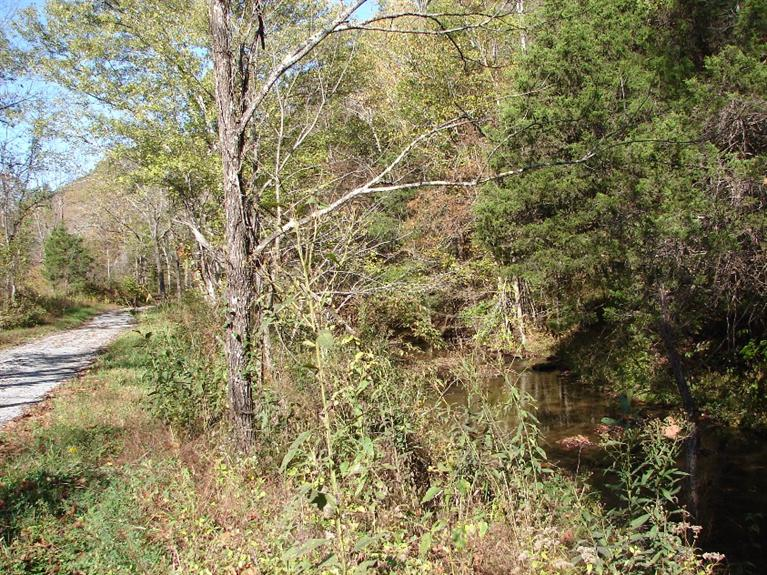 Image of Acreage for Sale near Columbia, Kentucky, in Adair county: 50.90 acres