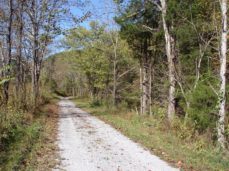Image of Acreage for Sale near Columbia, Kentucky, in Adair county: 17.00 acres