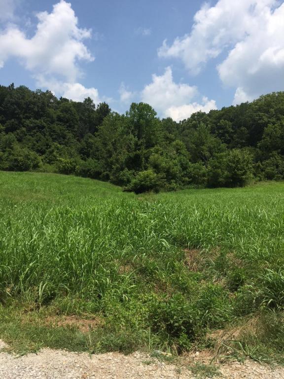 0 Bobby Wells Farm Subd. Albany, KY 42602