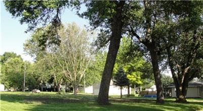 Real Estate for Sale, ListingId: 28272260, Schaller,IA51053