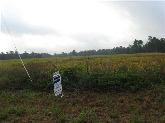 Real Estate for Sale, ListingId: 34116642, Santee,SC29142