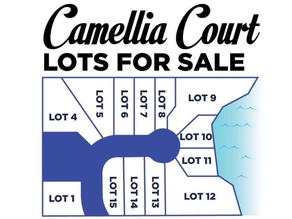 Tbd Camellia Court, one of homes for sale in Lake Charles