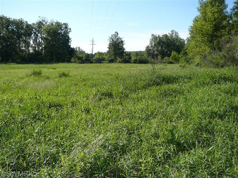 Real Estate for Sale, ListingId: 28731140, Burr Oak,MI49030