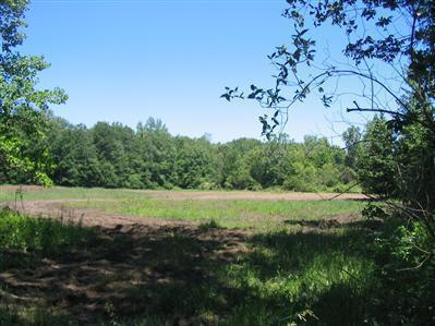 50.3 acres by New Buffalo, Michigan for sale